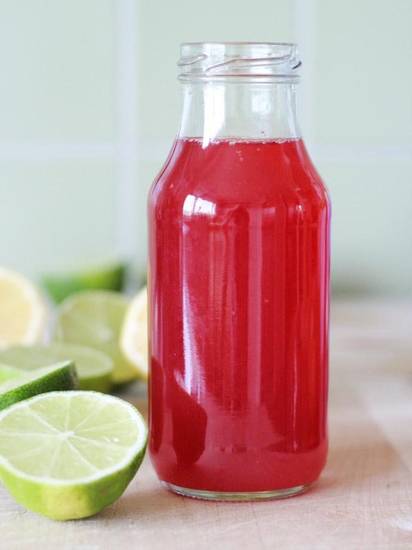 vegan-recpe-lingonberry-cordial